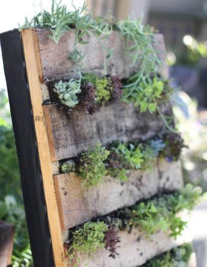 cmo hacer un jardin vertical casero