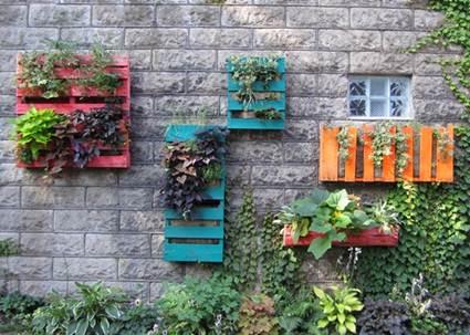 Maestra neila for Jardin vertical casero palet