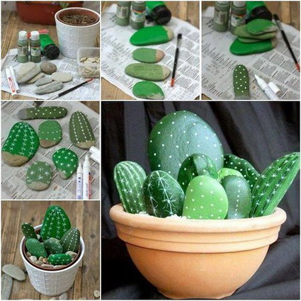 cactus de piedras