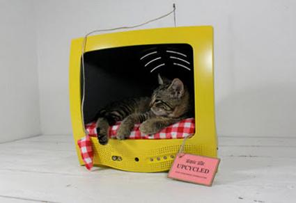 Como Hacer Una Cama Para Gato Archivos Manualidadesmanualidades