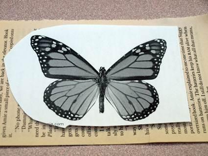 mariposas papel