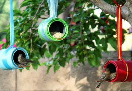 Comederos para aves silvestres