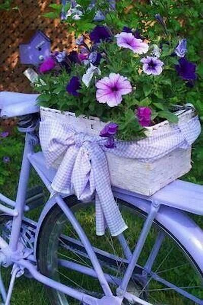 jardin bicicleta